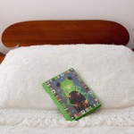 Journal on bed-frog cover