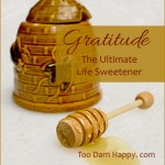 Saturday Sips: Gratitude, the ultimate life sweetener