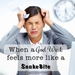 When a God Wink feels more like a Snakebite